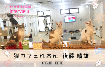 猫カフェ「れおん」と猫カフェ「にゃんくる」でXEM、NEM決済可能に